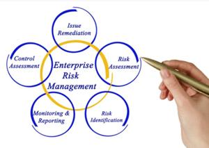 Enterprise Risk Management Diagram